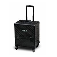 КЕЙС №16 Kodi Professional