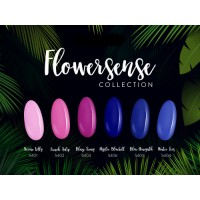 Collection Flowersense